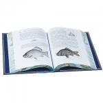 Исконно-русская рыбалка. Жизнь и ловля пресноводных рыб.